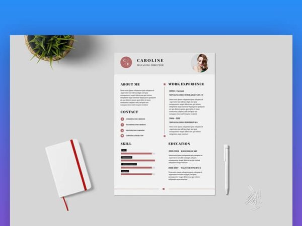 A Curriculum Vitae With Design Or Minimalist?